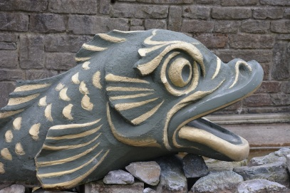 fish-337300_1920